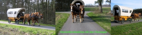 planwagenfahrt_collage